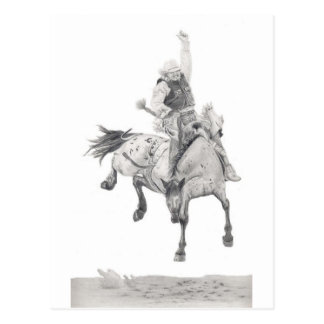 Saddle Bronc Postcard