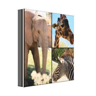 Safari Canvas Collage