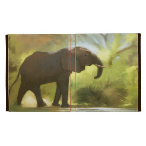 safari iPad folio covers