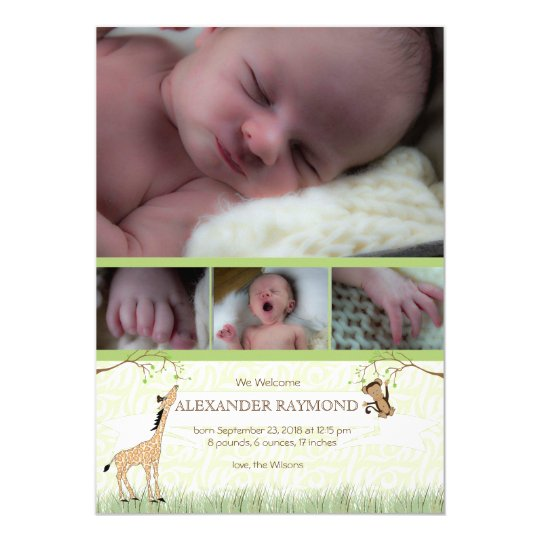 Safari Monkey Baby boy birth Annoucement Card