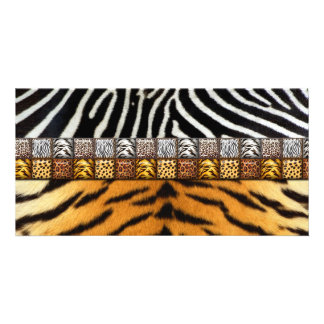 Safari Prints Custom Photo Card