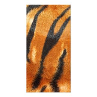 Safari Tiger Stripes Print Photo Card Template