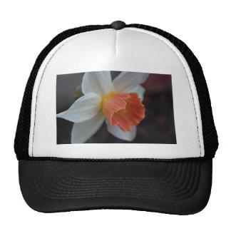 Saffron Ring Trucker Hat