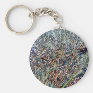 Sage and Summer Grass Key Chains