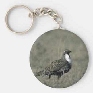 Sage grouse keychain