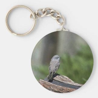Sage sparrow keychains