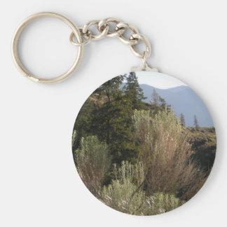 Sagebrush and mountains basic round button keychain