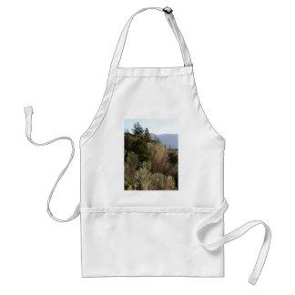 Sagebrush and mountains standard apron