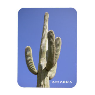 Saguaro Cactus - Arizona - Magnet