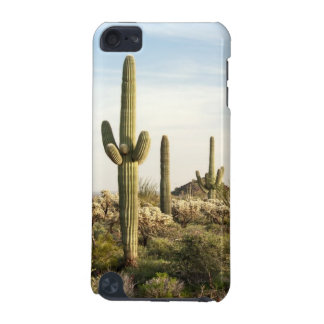 Saguaro Cactus, Arizona,USA iPod Touch (5th Generation) Cases