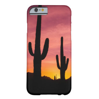 Saguaro cactus at sunrise, Arizona Barely There iPhone 6 Case