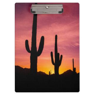 Saguaro cactus at sunrise, Arizona Clipboards