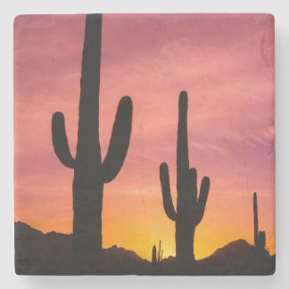 Saguaro cactus at sunrise, Arizona Stone Beverage Coaster