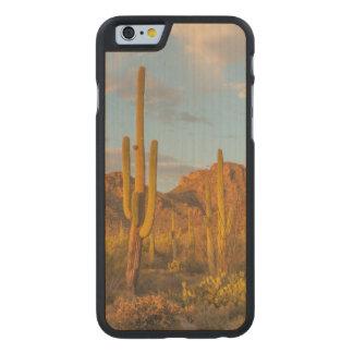 Saguaro cactus at sunset, Arizona Carved Maple iPhone 6 Case