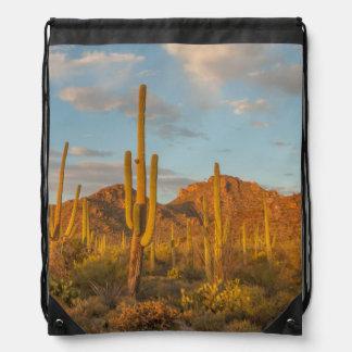 Saguaro cactus at sunset, Arizona Drawstring Bag