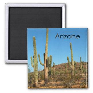 Saguaro cactus magnet
