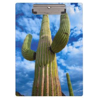 Saguaro cactus portrait, Arizona Clipboard