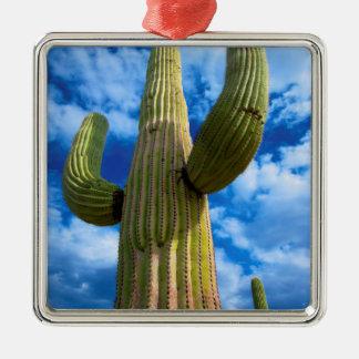 Saguaro cactus portrait, Arizona Silver-Colored Square Ornament