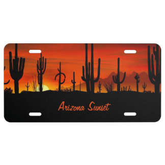 Saguaro Cactus Sunset - License Plate