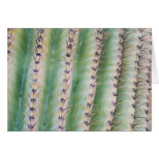 Saguaro Closeup | Greeting Card