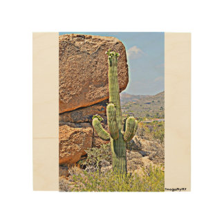 """Saguaro in the Boulders"" Wood Wall Art. Wood Canvases"