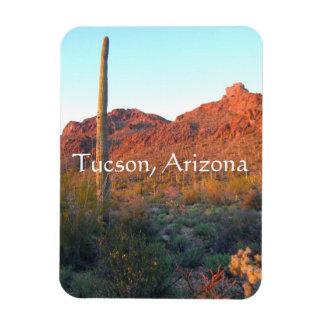 Saguaro national park, Tucson Arizona Magnet