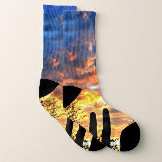 Saguaro Sky Unisex Socks
