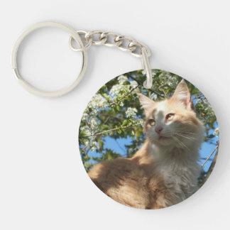 Sahara Cat in a Tree Key Chain