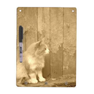 Sahara Cat in Sepia Dry Erase Board