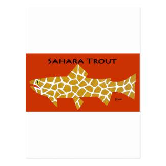 Sahara Trout Postcard