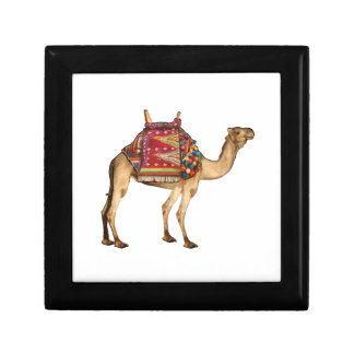 Saharan Taxi Gift Box