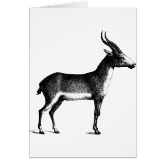 Saiga Antelope Card