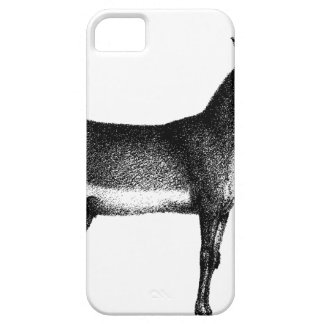 Saiga Antelope iPhone 5 Case