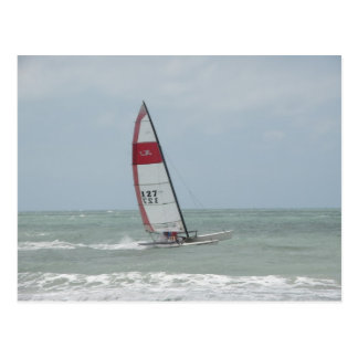 Sailboat at Clearwater Beach Postcard