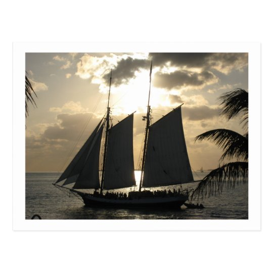 Sailboat in Sunset Postcard