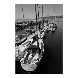 Sailboats Black and White Poster