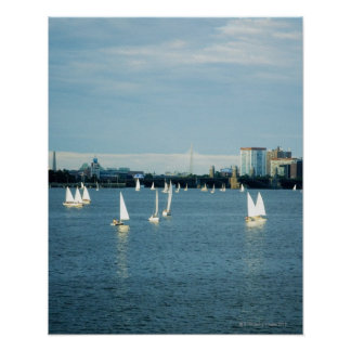 Sailboats in a river, Charles River, Boston, 2 Poster