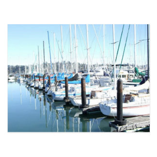Sailboats in Harbor Postcard