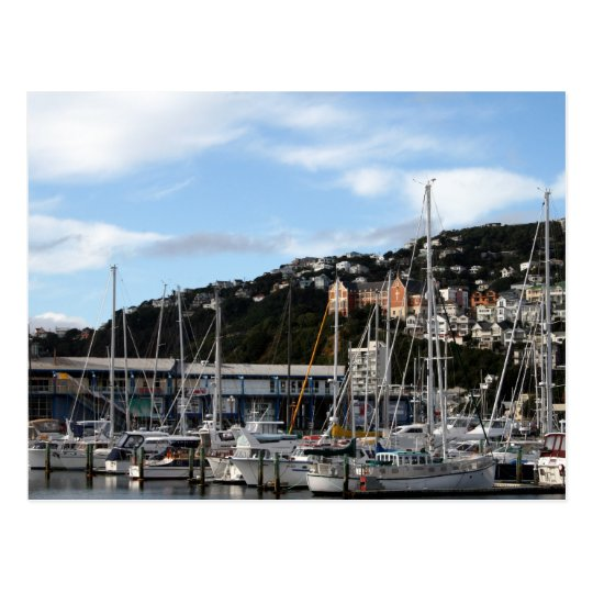 Sailboats in Wellington Postcard