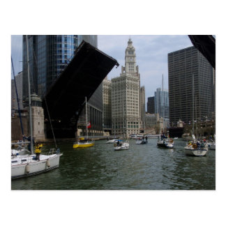 Sailboats on the Chicago River Postcards