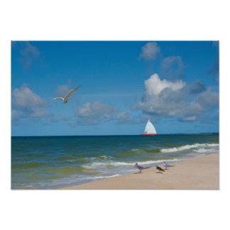 Sailing on the Gulf of Mexico Print