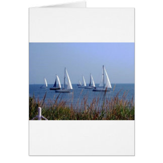 Sails on the Chesapeake Note Card
