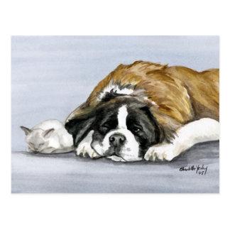 Saint Bernard and Kitten Dog Art Postcard