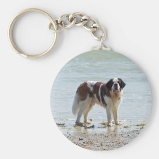 Saint Bernard at the beach keychain, gift idea Keychain