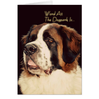 Saint Bernard Birthday Card
