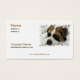 Saint Bernard Business Card