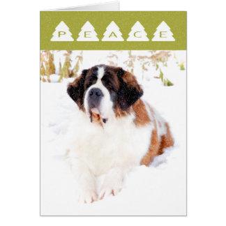 Saint Bernard Christmas Card