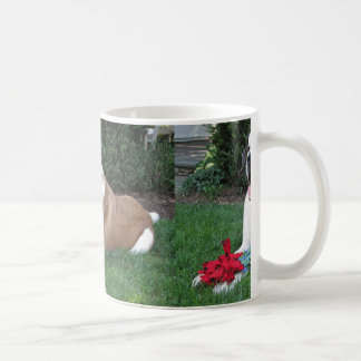 saint bernard laying coffee mug