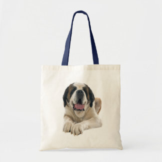 Saint Bernard Puppy Dog Canine Love