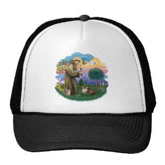 Saint Francis and Somali Cat Trucker Hat